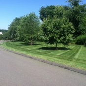 Lawn Care and Property Maintenance
