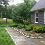 DrainScapes Plantings